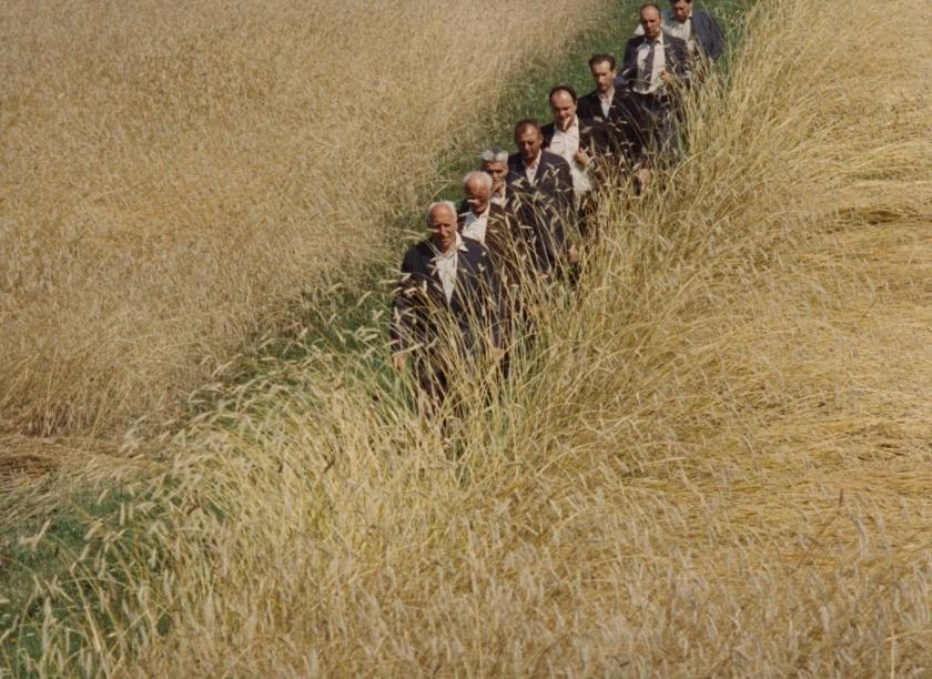 All My Good Countrymen has a deep feel for rhythms of rural life